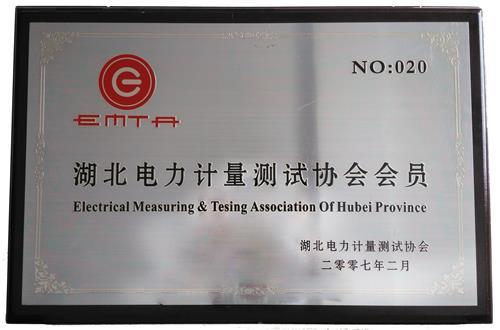 电力测量会员